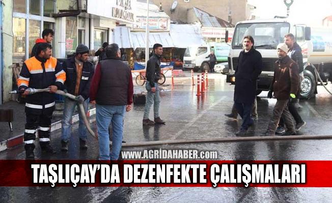 Taşlıçay'da caddeler ve ortak kullanım alanları dezenfekte edildi