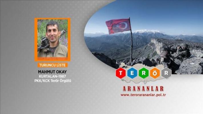 Yaralı PKK'lı da koronavirüs tespit edildi
