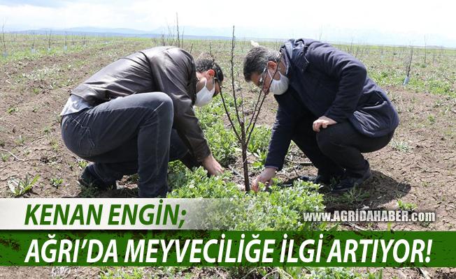 Ağrı Tarım İl Müdürü Kenan Engin; Çiftçilerin meyveciliğe ilgisi artıyor