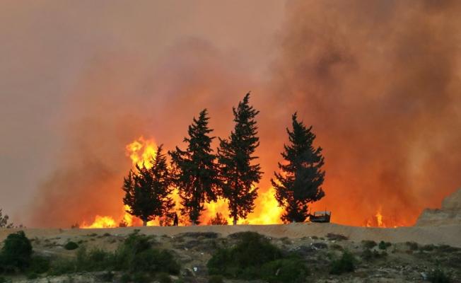 Adana'da orman yangını! 6 köy ve boşaltıldı