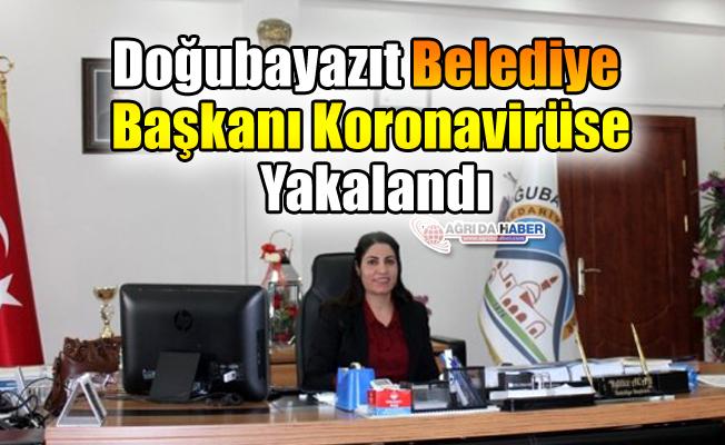 Doğubayazıt Belediye Başkanı Koronavirüse Yakalandı