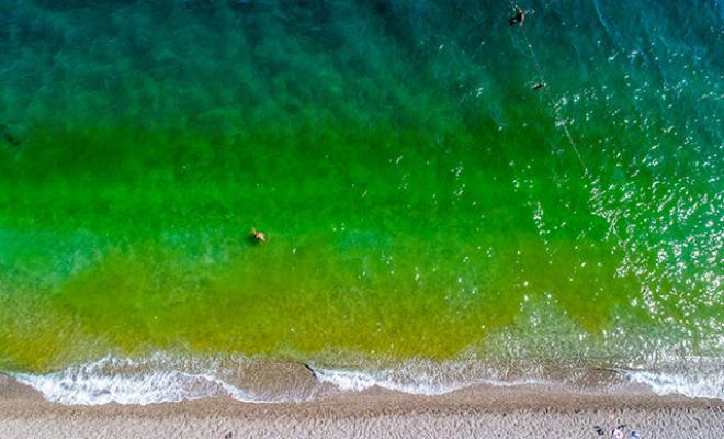 Antalya'da Denizin Renginde Şok Değişim!
