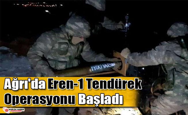 Ağrı'da Eren-1 Tendürek Operasyonu Başladı
