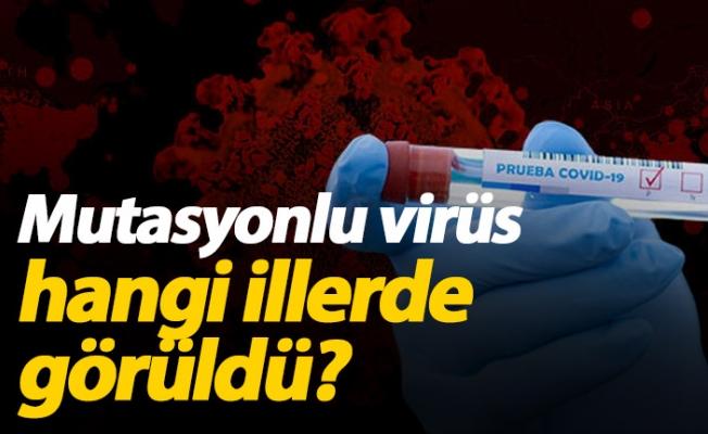 İki İlde daha Mutasyonlu koronavirüse rastlandı