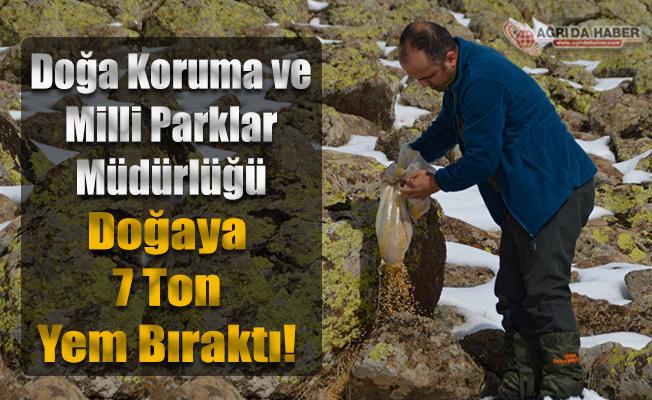 Doğa Koruma ve Milli Parklar Müdürlüğü doğaya 7 ton yem bıraktı