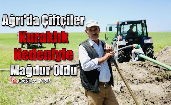 Ağrı'da Çiftçiler Kuraklık Nedeniyle Mağdur Oldu