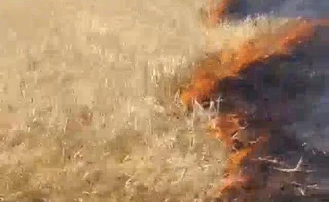 Başkan Sayan'a ait tarım arazisinde yangın çıktı
