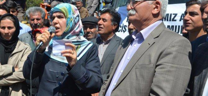 Erciş Belediyesi kiraladığı araçları halka tanıttı