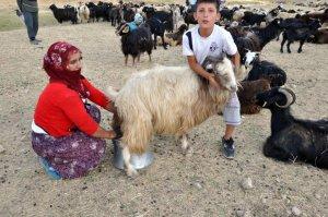 Muş'ta kadınların zorlu yolculuğu
