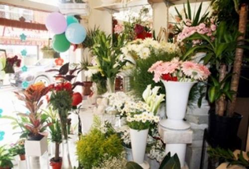 Siirt'te Çiçekler Satışlardan Memnun