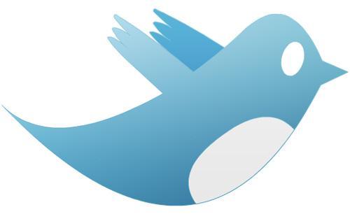 Twitter, Türkiye yi reddetti!