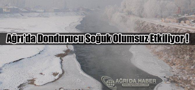 Ağrı'da Dondurucu Soğuk Olumsuz Etkiliyor !