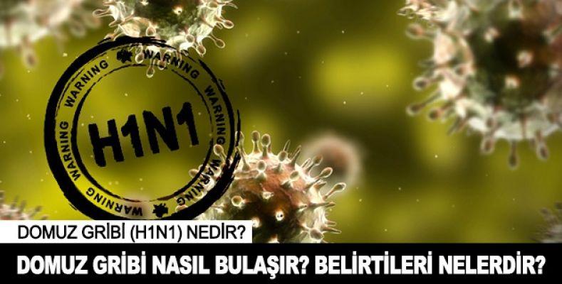 H1N1 Domuz Gribi Nedenleri, Domuz gribinden nasıl korunuruz,Sağlık haberleri