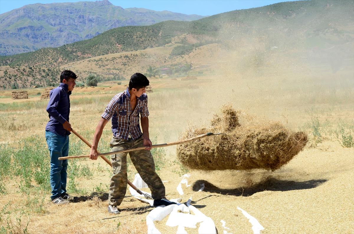 Bitlis'te Çiftçilerin Zorlu Patos Mesaisi Başladı