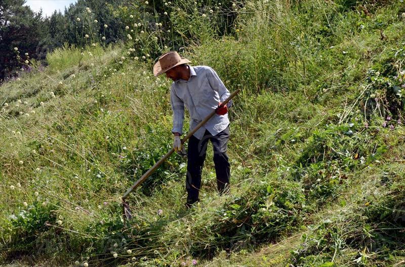 Kars'ta Geleneksel Tarım Aletleri Çiftçilerin Vazgeçilmezi