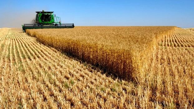 Tunceli'de Tarımsal Projelere Destek