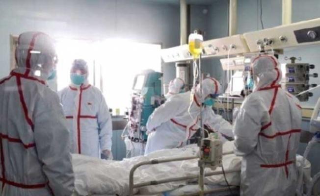 Çin'de Kuş gribi 106 kişi hayatını kaybetti !