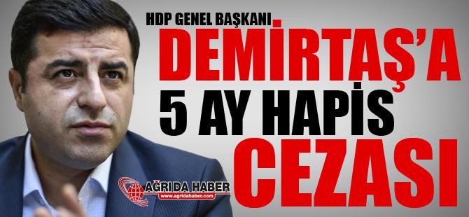 Selahattin Demirtaş'a 5 Ay Hapis Cezası Verildi!
