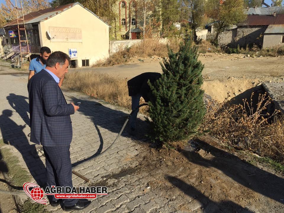 Hamur Belediyesi yeşil alan çalışmalarına başladı