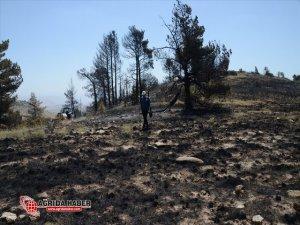 Sarıkamış'taki Örtü Yangını Söndürüldü