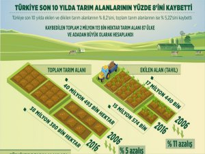 Türkiye Son 10 Yılda Tarım Alanlarının Yaklaşık Yüzde 8,2'sini Kaybetti
