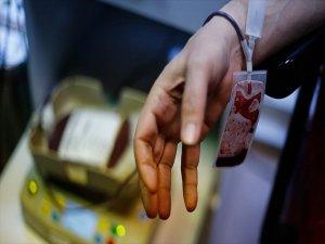 Kök Hücre Bağışçı Sayısı 241 bin 380 oldu