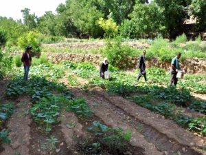 200 Yıllık Geleneği Sürdüren Köylüler Hastalık Nedir Bilmiyor