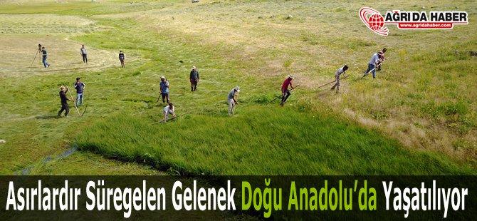 Asırlardır Süregelen Gelenek Doğu Anadolu'da Yaşatılıyor