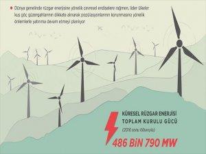 Dünya Çevresel Önlemlerle 'Rüzgar'a Doğru Koşuyor