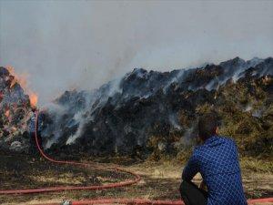 Erzurum'da Besicinin 20 bin adet ot balyası kullanılmaz hale geldi