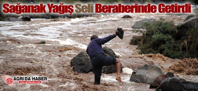 Ağrı'da Sağanak Yağış Seli Beraberinde Getirdi