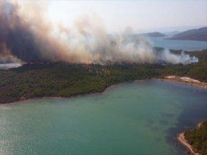 Balıkesir Ayvalık'ta Orman Yangını