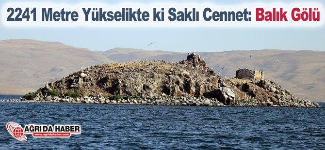 2241 Metre Yükseklikte ki Saklı Cennet: Balık Gölü