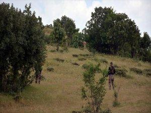 Muş Ve Bitlis'te Toplamda 4 Terörist Etkisiz Hale Getirildi