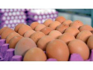 Gıda, Tarım Ve Hayvancılık Bakanı Fakıbaba: Türkiye'de Fipronilli Yumurta Tespit Edilmedi