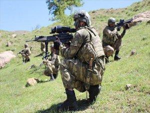 Silopi'de Terör Operasyonu: 2 Terörist Etkisiz Hale Getirildi