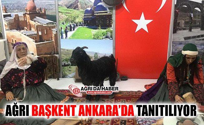 2. Ağrı Tanıtım Günleri Başkent Ankara'da Başladı