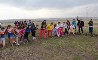 Ağrı'da okul sporları kros müsabakaları