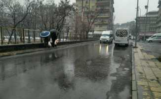 Ağrı'da Aralık Ayında Yağmur Yağdı