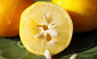 Saça Limon Sürmek Çok Faydalı!
