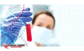 Kanser Hastalığına Canlı İlaçla Çözüm