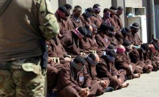 Irak 300'ü Aşkın İşid Üyesini İdam Edecek