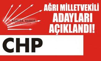 2018 CHP Ağrı Milletvekili Adayları Açıklandı