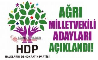 2018 HDP Ağrı Milletvekili Adayları Açıklandı