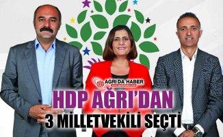 HDP Ağrı'dan 3 Milletvekili Çıkardı! İşte 27. Dönem HDP Milletvekilleri