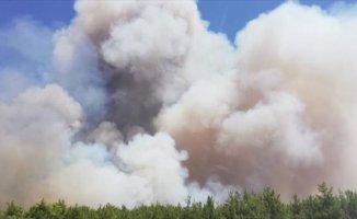 Antalya'nın Aksu İlçesinde Orman Yangını
