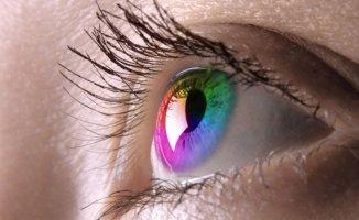 Göz Rengini Etkileyen Besinler