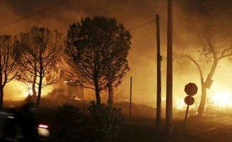 Yunanistan'da Yangın Çok Sayıda Ölü