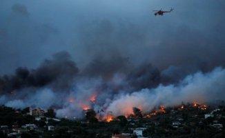 Yunanistan'da Yangın Felaketi Ölü Sayısı Gittikçe Artıyor