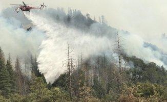 ABD'de Yangın 8 Kişi Öldü
